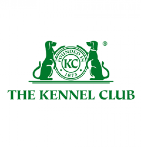 Kennel Club Searches for Top Dog-Friendly Business