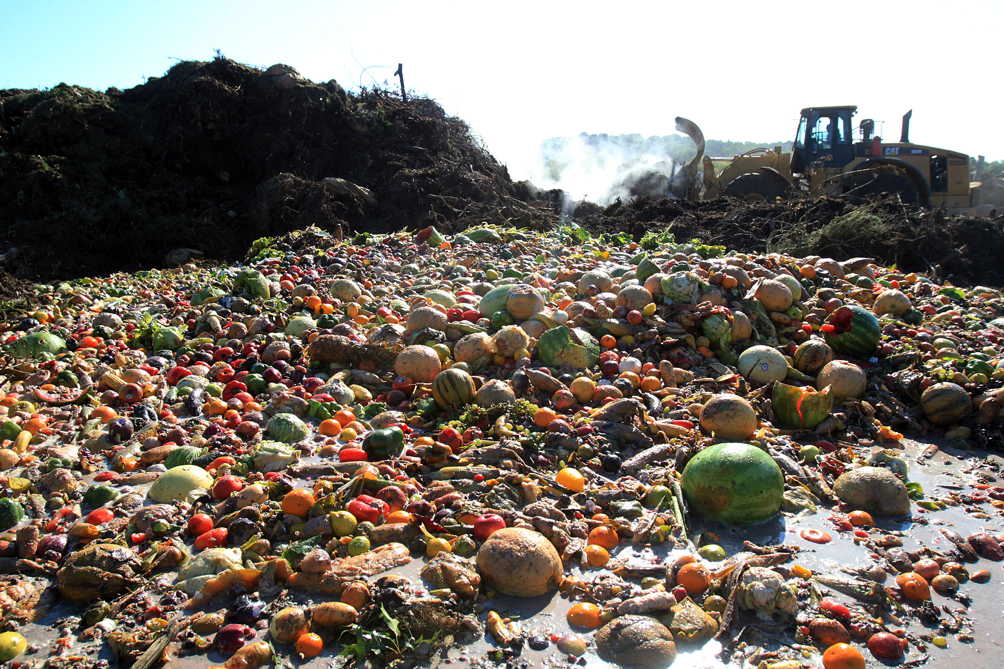 Food Loss and Waste Accounting and Reporting Standard