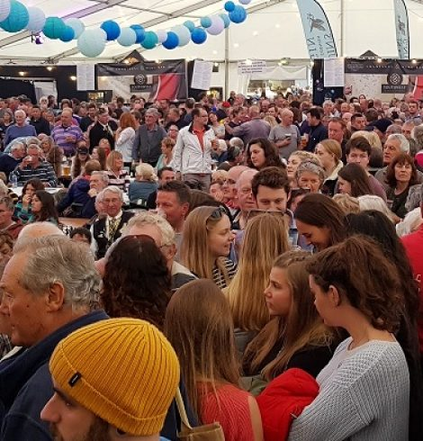 Falmouth Oyster Festival Comes Back in October