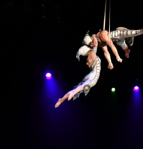 Cirque du OVO Comes to Sheffield