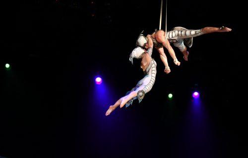 Cirque du OVO Comes to Sheffield