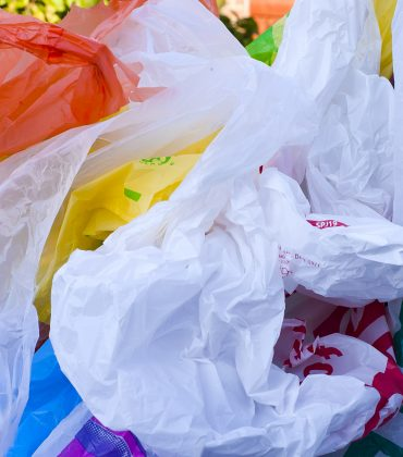 41% of Shoppers Admit to Stealing Plastic Bags