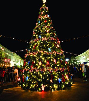 Consumers Want to See More Christmas Trees