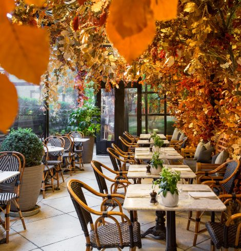 Dalloway Terrace Transforms for Autumn 2019 with Æcorn Aperitifs