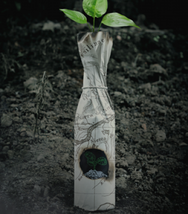 Drygate launches Europe's first reforestation beer, pledging to plant 10,000 trees with proceeds