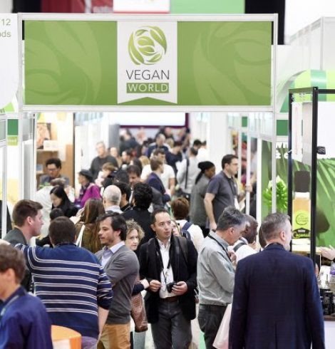 The Unstoppable Rise of Vegan Alternatives