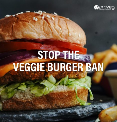 EU Veggie 'Burger' Ban Challenged Across Europe